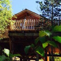 cabane-arbre-spa