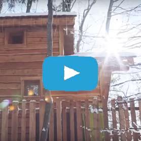 video cabane dans les arbres