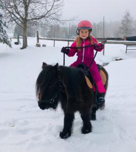 randonnée à cheval dans les Bauges
