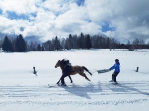 ski joering la feclaz